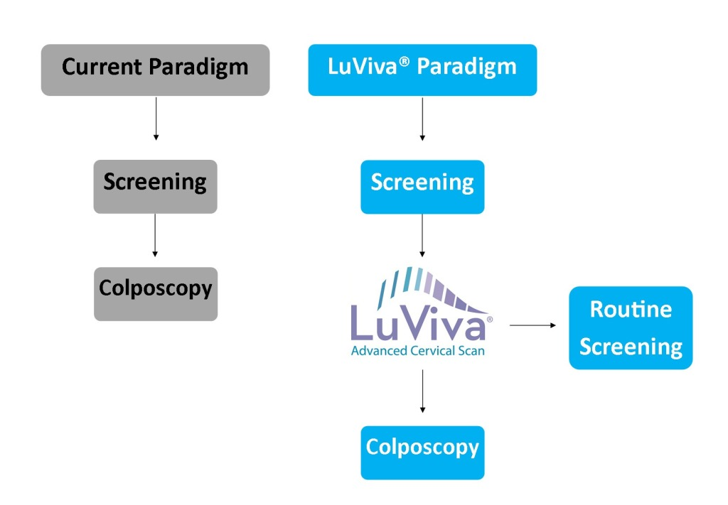 LuViva Paradigm update less color